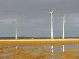 Priimtas sprendimas dėl strateginio pasekmių aplinkai vertinimo (SPAV) inžinerinės infrastruktūros vystymo plano vėjo jėgainių parko statybai Rokiškio rajono savivaldybėje